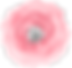 diamond-rose_0014_1.png