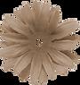 RayesDes_12CSBbrn_flower3-3.png