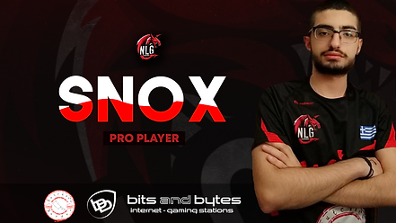 sn0x_roster.png