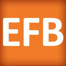 Evropski fond za Balkan