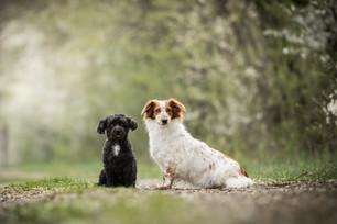 Basti & Abby