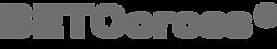 BETOcross Logo