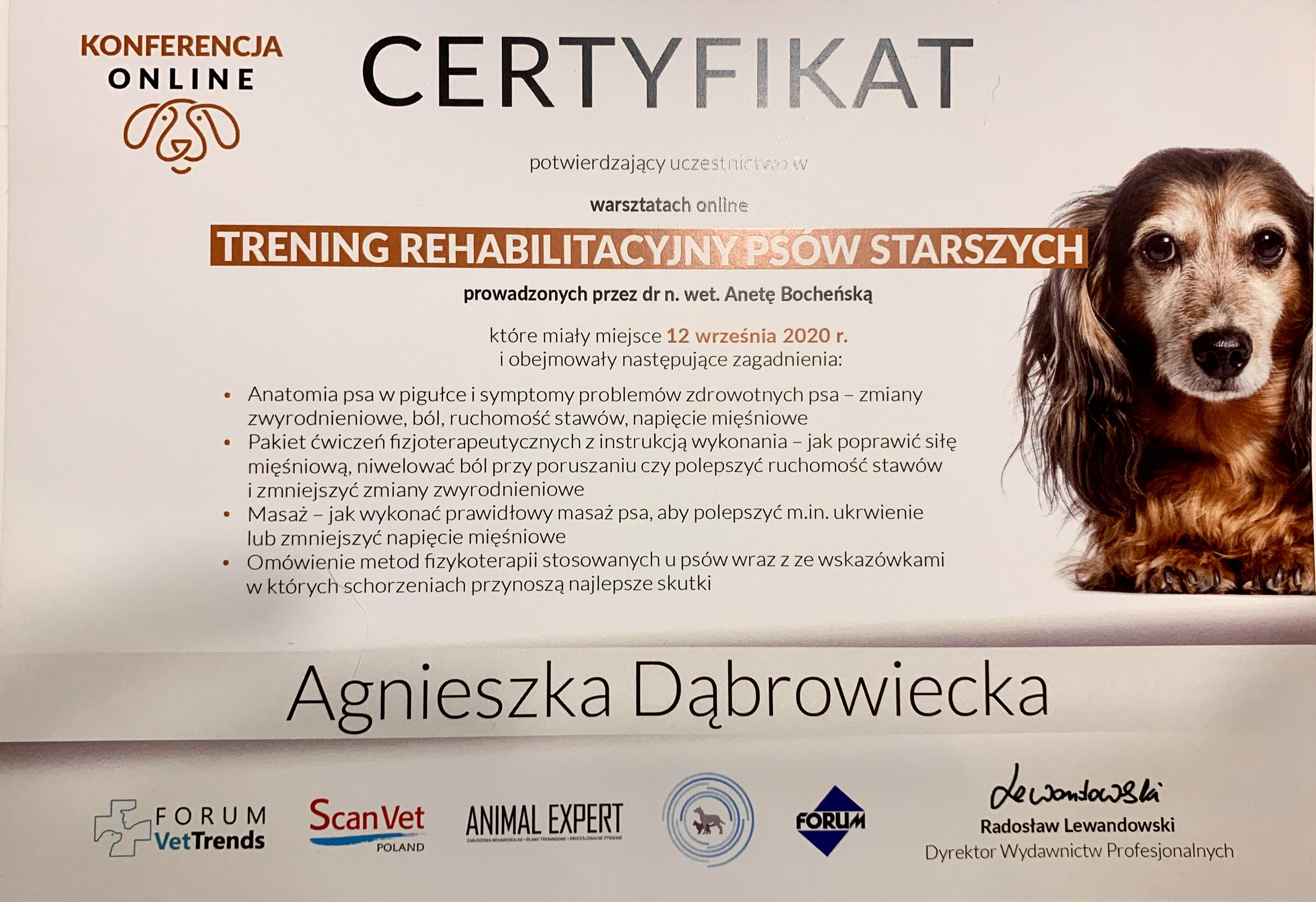 Dyplom_warsztaty_rehabilitacja_psów_sta