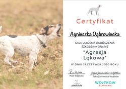 agresja_lękowa_Wojtków_szkolenia_certy