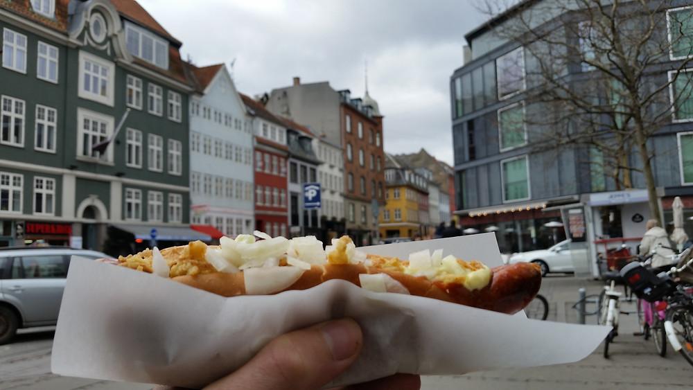 A Street Dog in Copenhagen Denmark