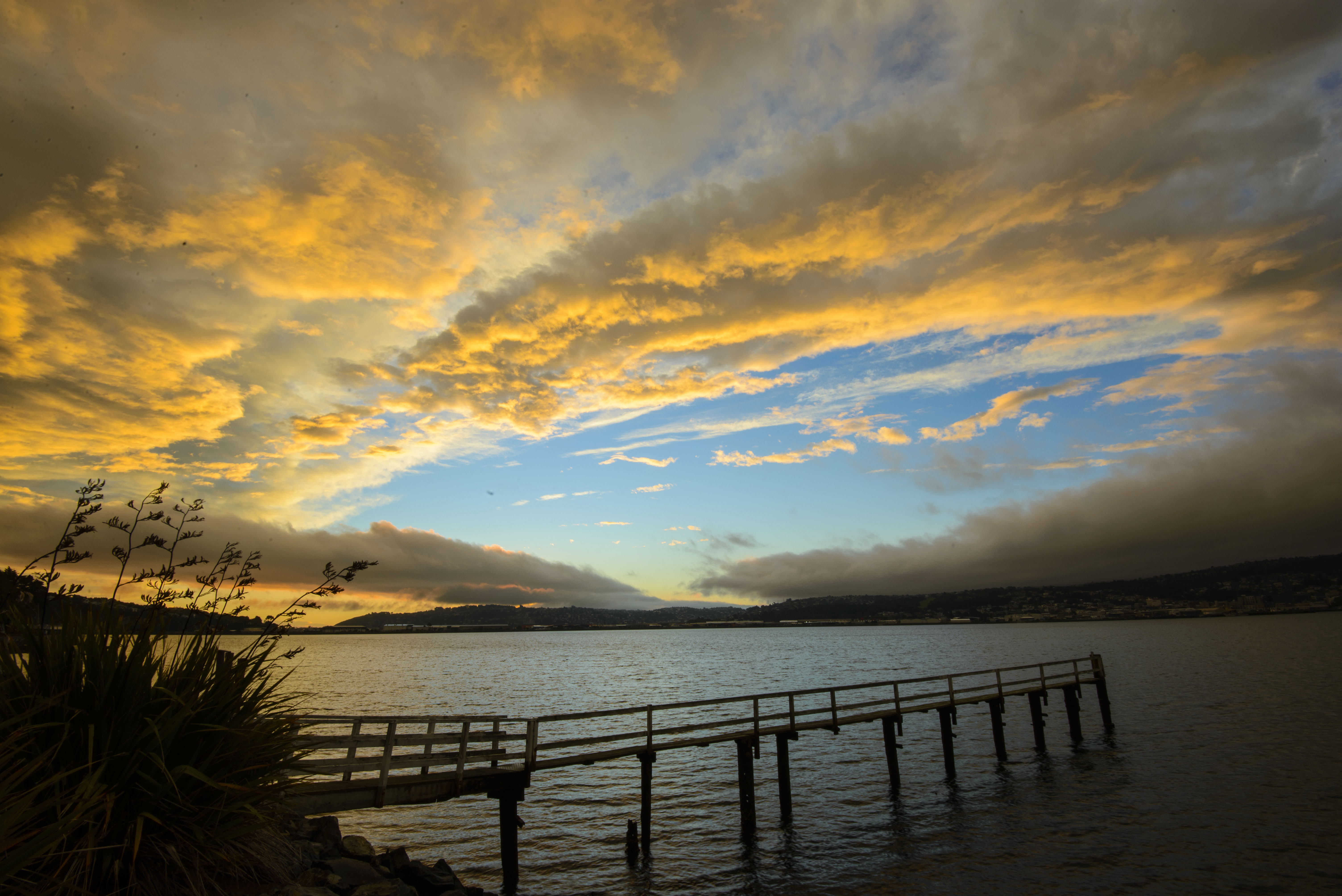 Vauxhall sunset, Otago Harbour