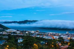 Dunedin View Blue Hour -2