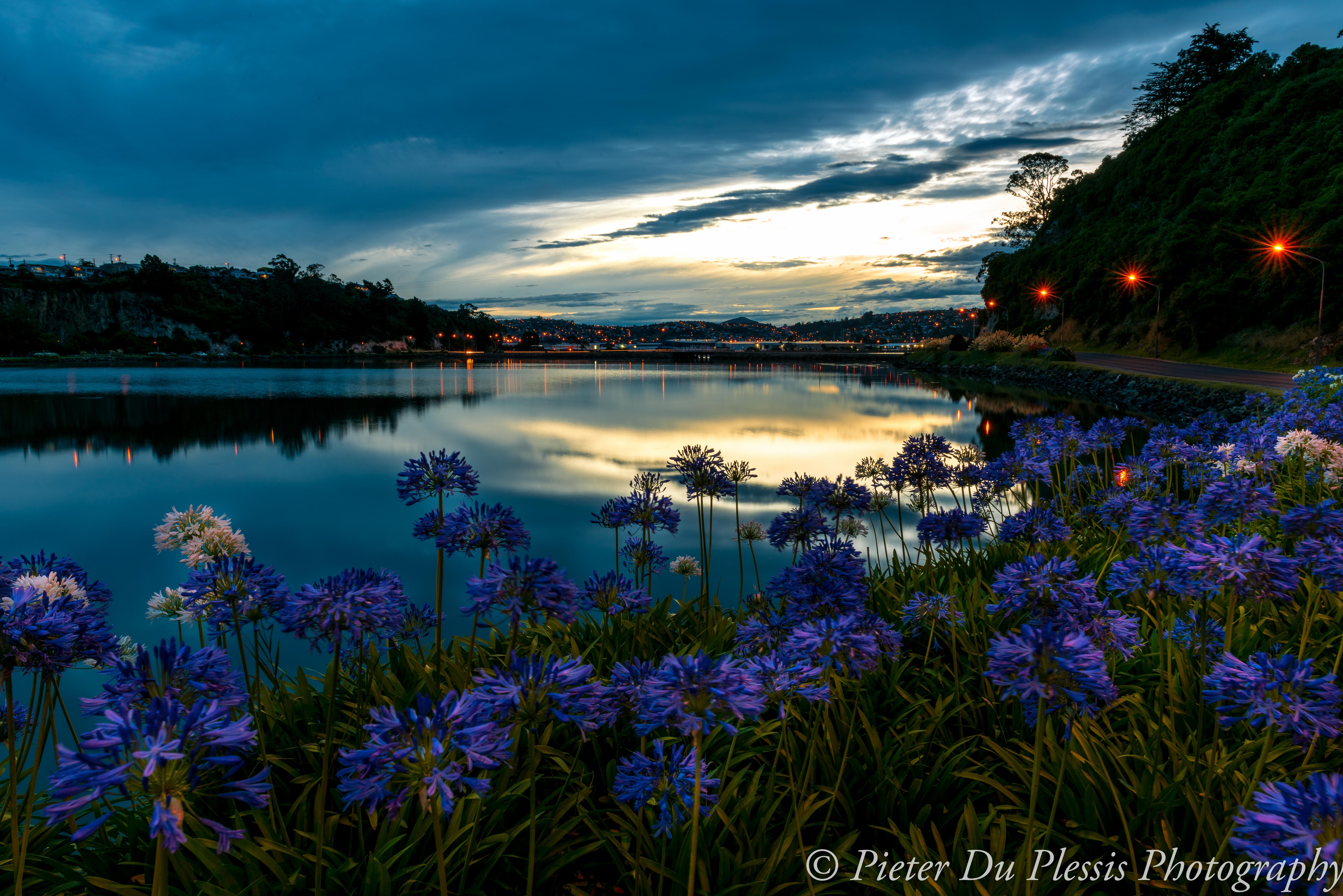 Andersons Bay, Dunedin