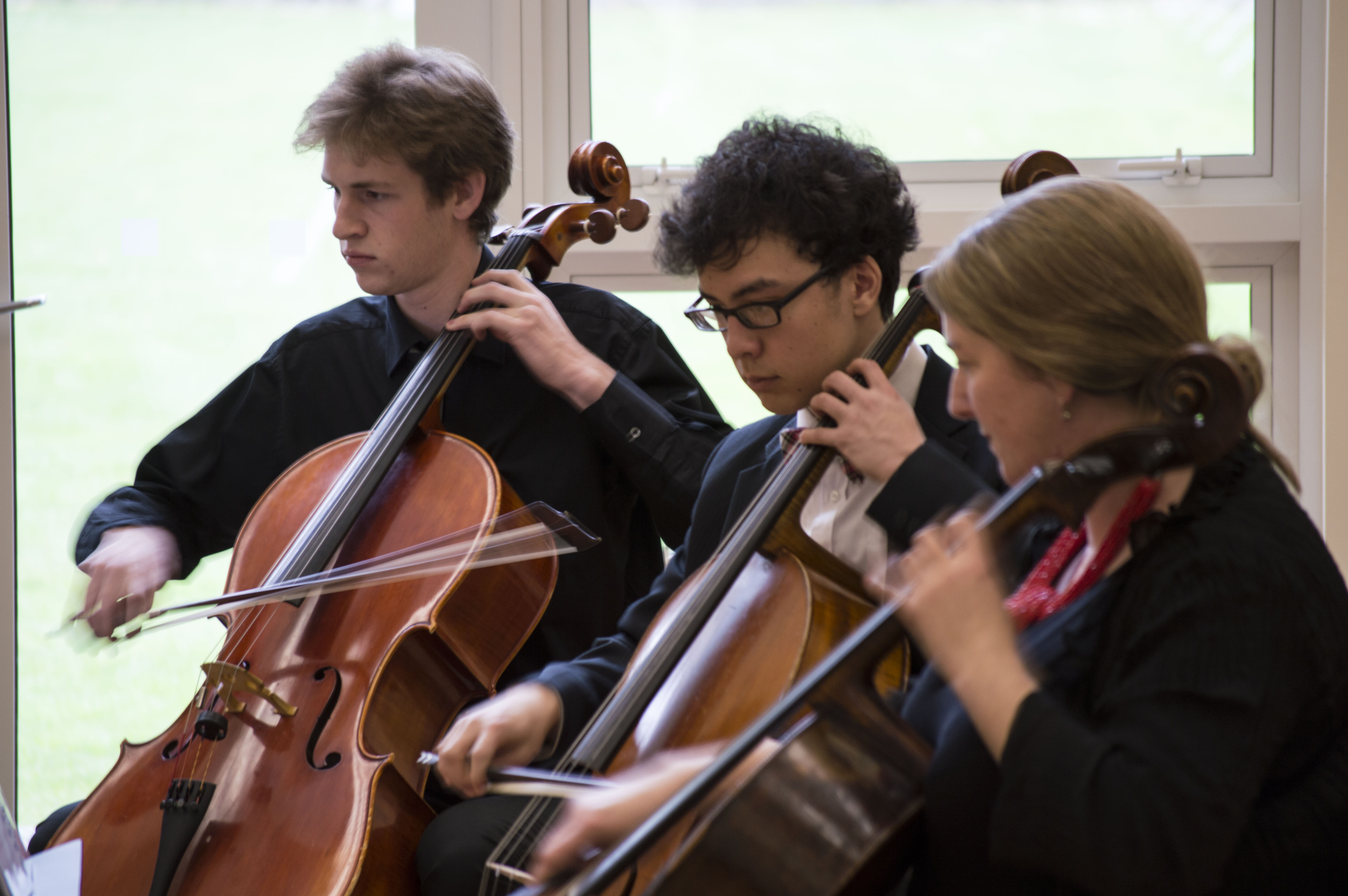 Cellist of Otago, May 2014_6