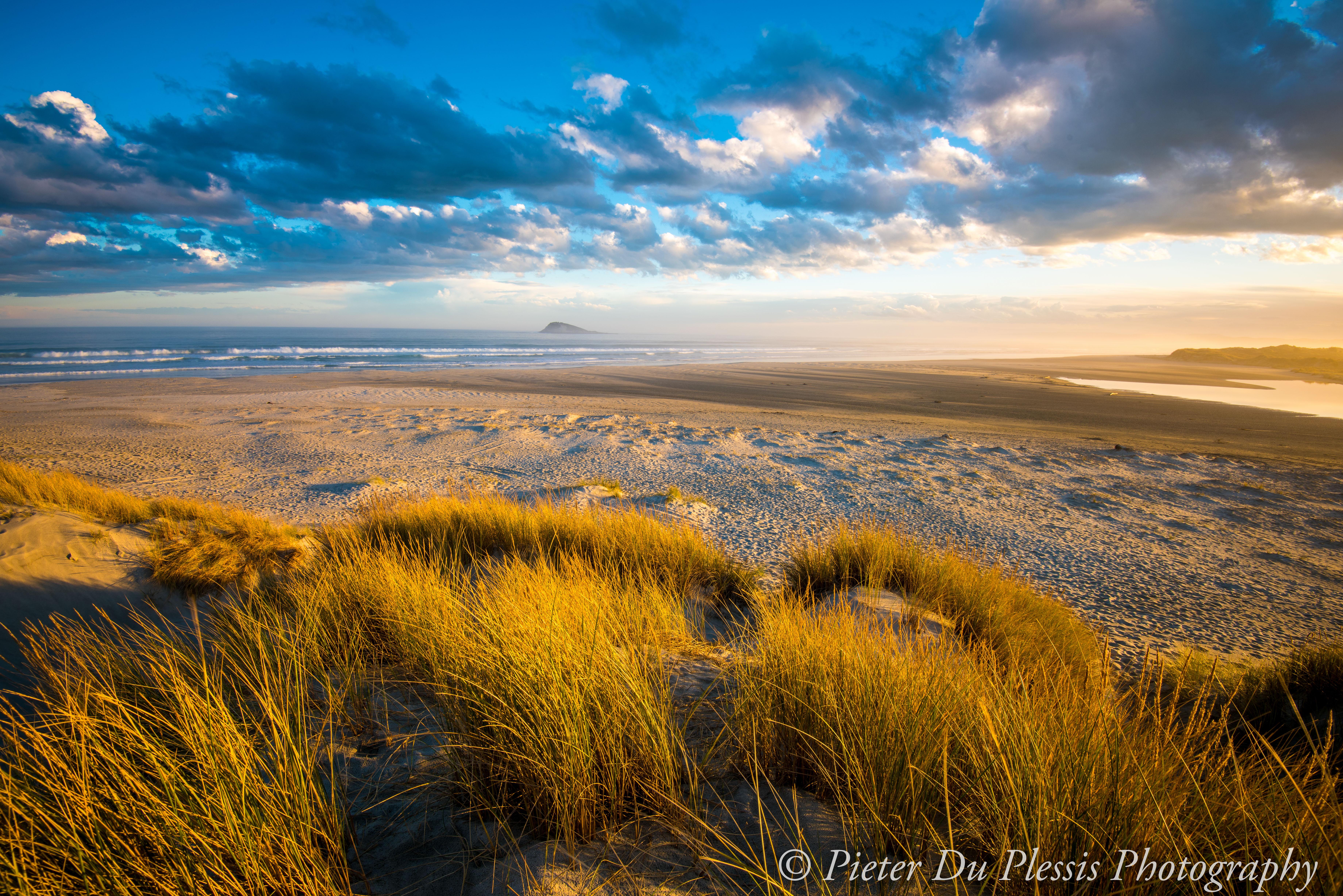 Waldronville beach, Dunedin