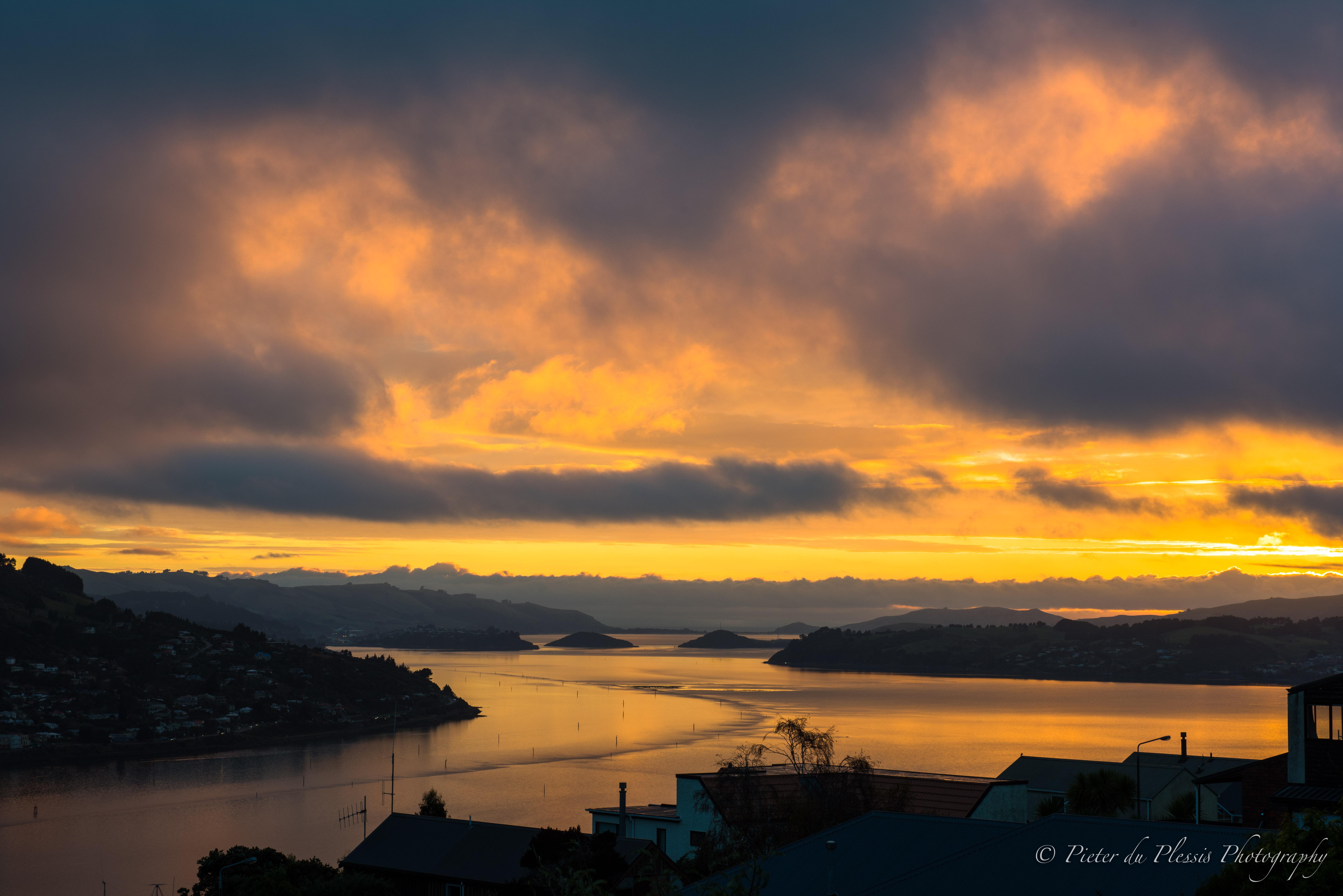Otago Harbour,Dunedin-1
