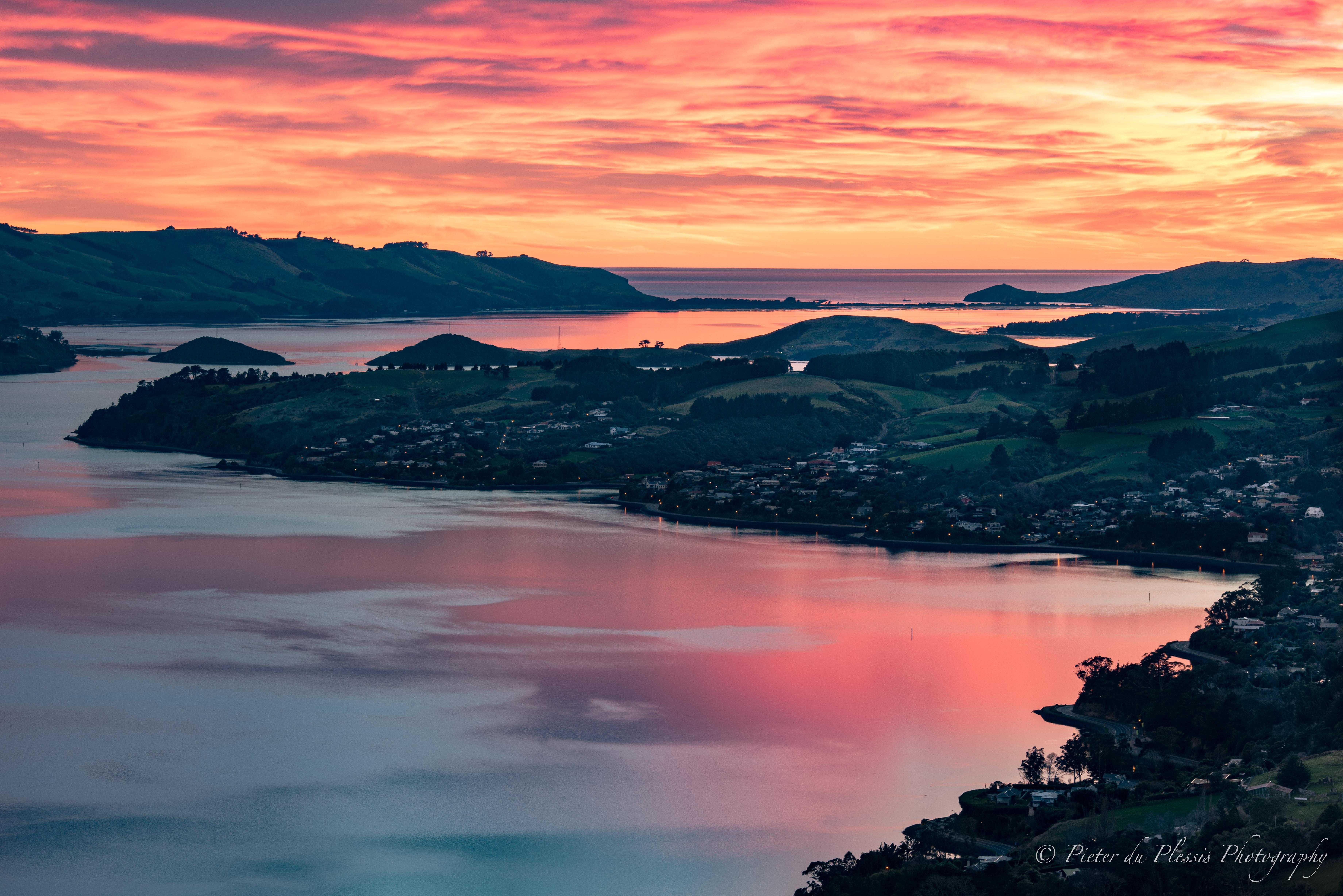 Otago Peninsula,Dunedin- 1