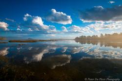 Kaikorai Lagoon, Dunedin
