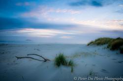 Waldronville Beach
