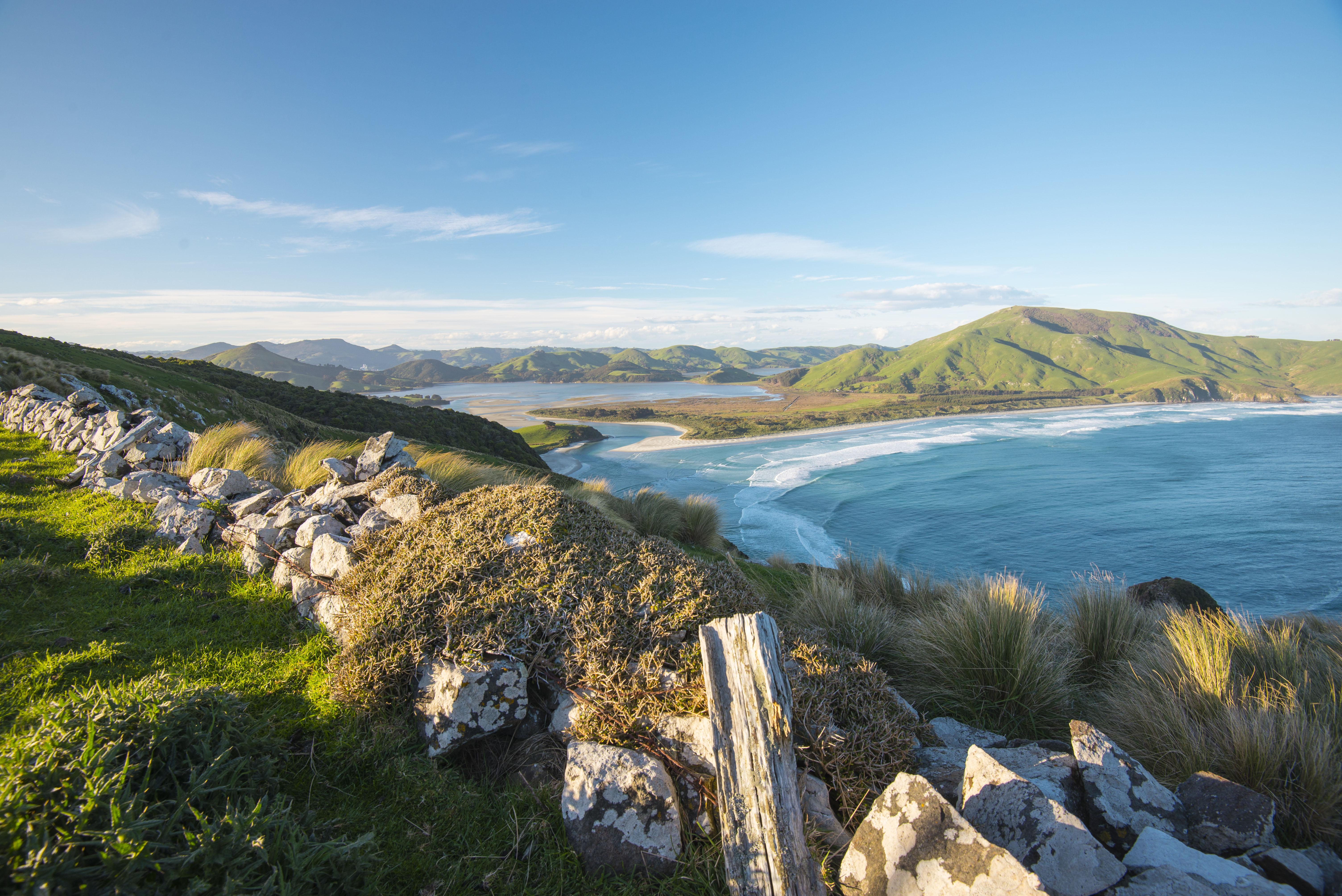 Otago Penisula, Dunedin