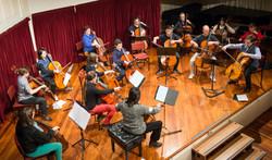 Cellists of Otago-2 copy