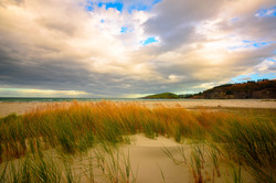 Warrington Beach, Dunedin