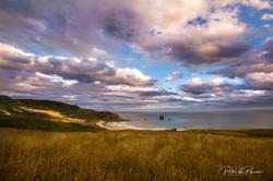 Sandfly Bay, Dunedin Jan 2019(2)