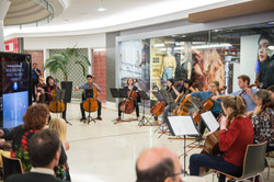 Bach's Bash at Meridian Mall