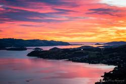 Otago Peninsula,Dunedin-2