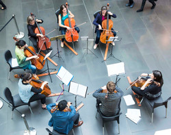 Cellists of Otago_23