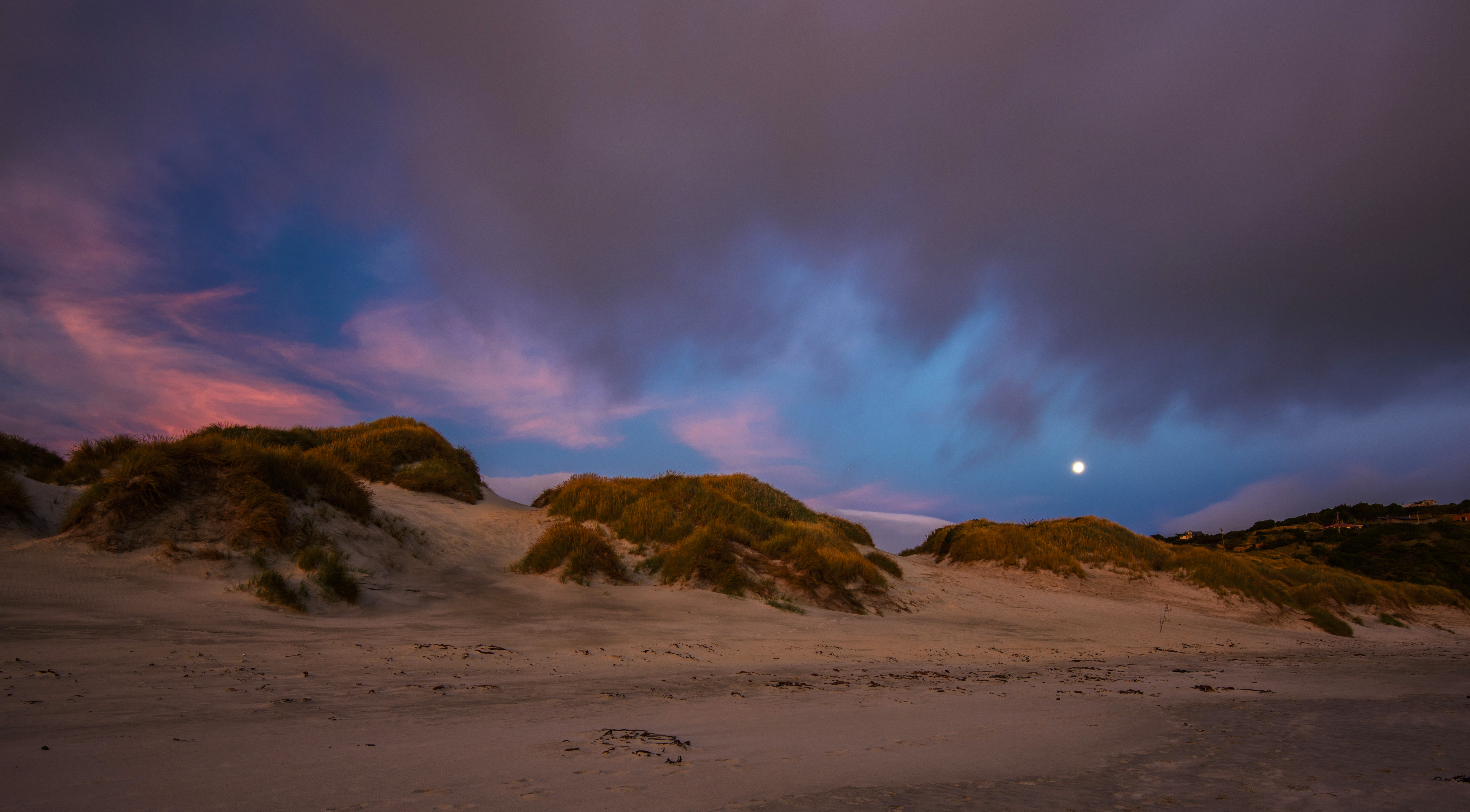Tomahawk Dunes, Dunedin