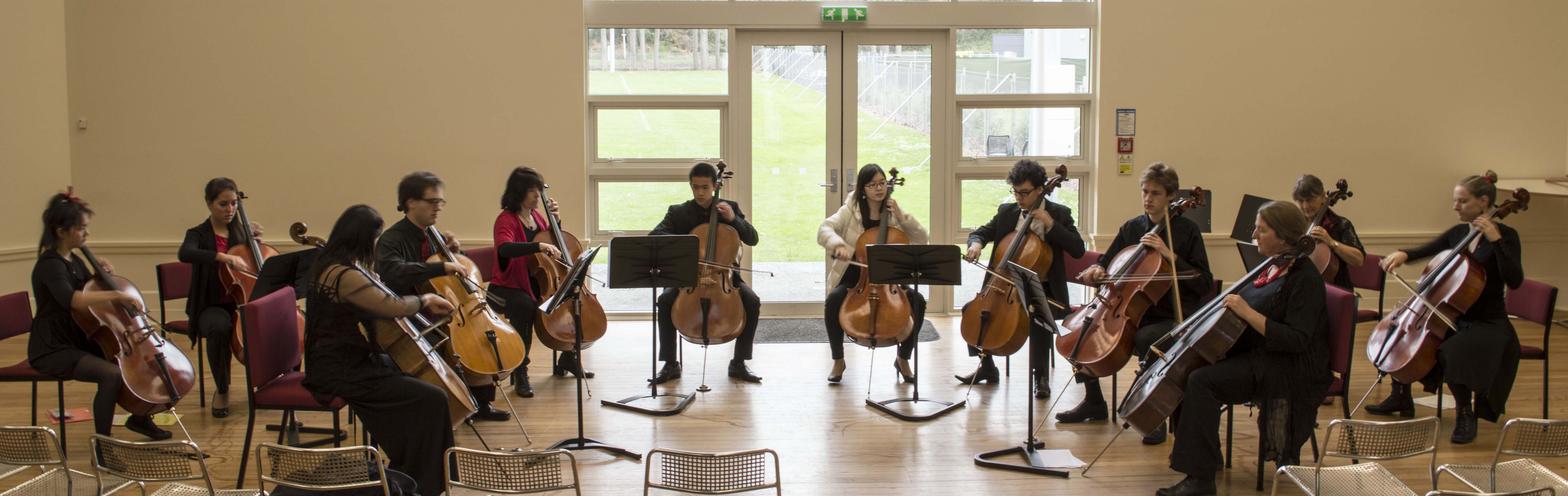 Cellist of Otago May 2014