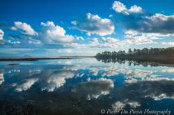 Island Park Reserve, Dunedin