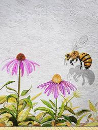 #HoneyBee