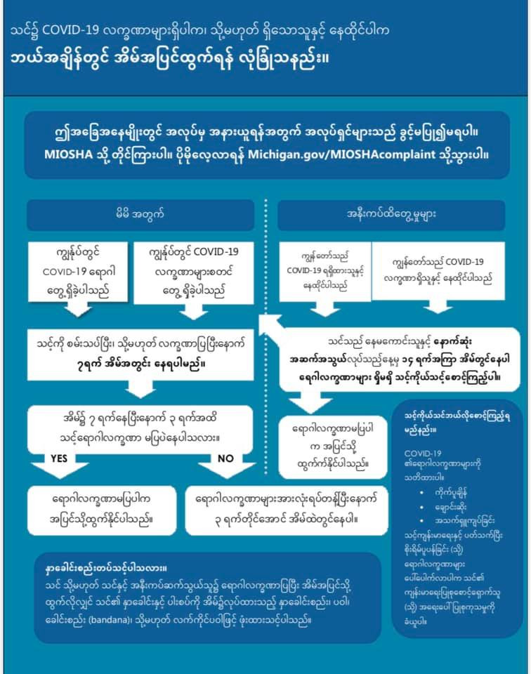 leaving home symptoms Burmese.jpg
