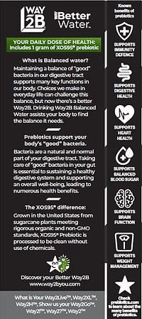 Prebiotic Benefits.png