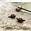 Thumbnail: Slow Sunsets / tiny snail sculptures
