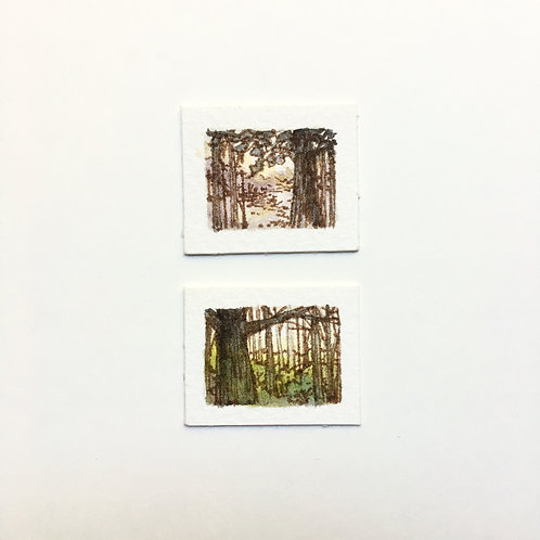 Forests... / tiny study (unframed)