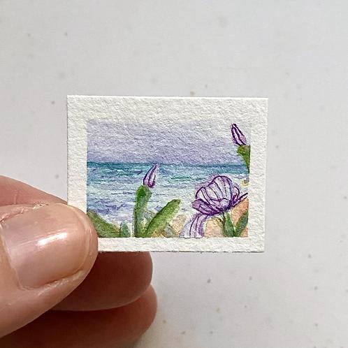 Iris Goes To The Coast / tiny mixed media (unframed)
