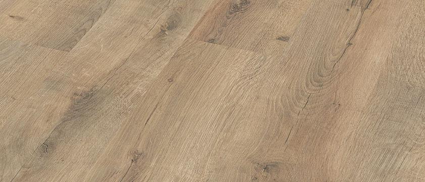 LC 55 Risseiche Terra 6439