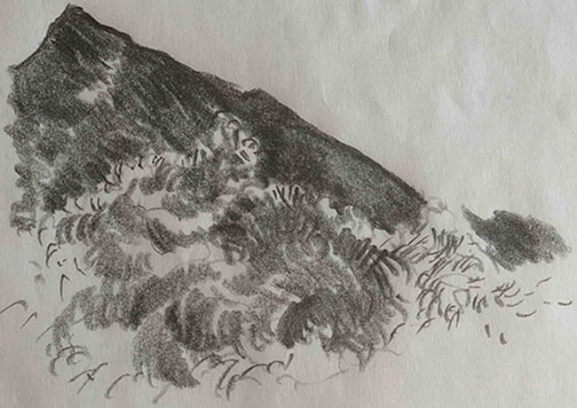 coal hill.jpg