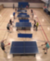 Table Tennis Ping Pong Fort Collins Colorado