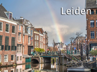 101 Leiden.jpg