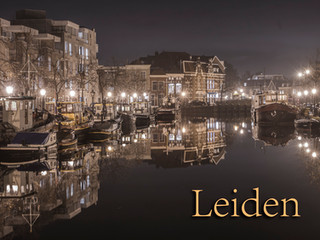 065 Leiden