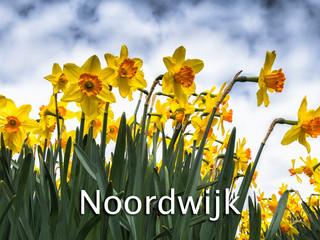 058 Noordwijk