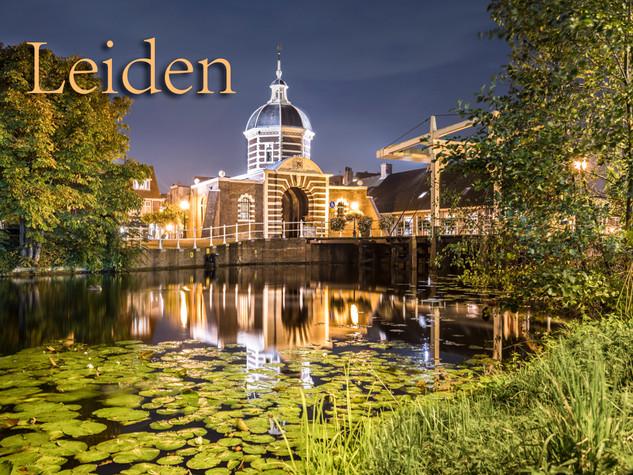 071 Leiden