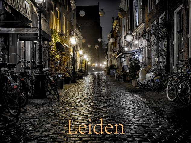049 Leiden
