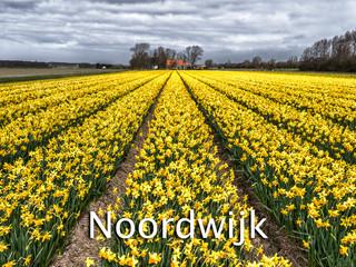 057 Noordwijk