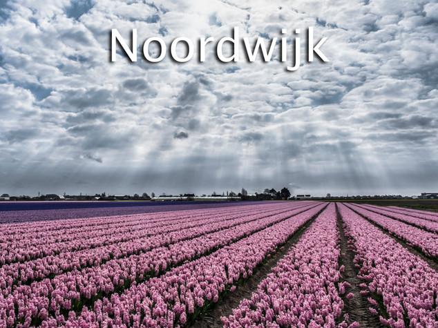 047 Noordwijk