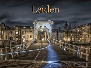 033 Leiden