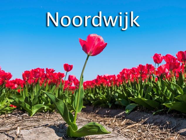 044 Noordwijk