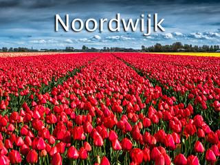 039 Noordwijk