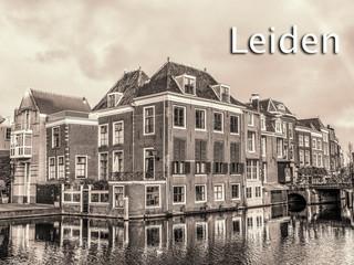102 Leiden.jpg