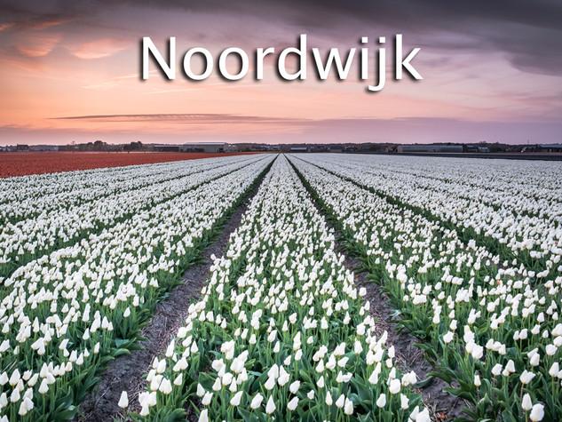 036 Noordwijk