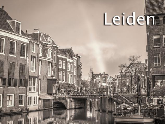 100 Leiden.jpg
